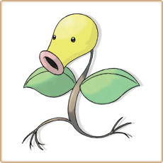 Chétiflor Pokemon Go