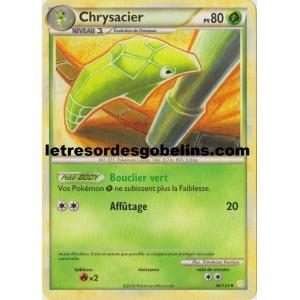 Chrysacier Pokemon Go  Herbeville
