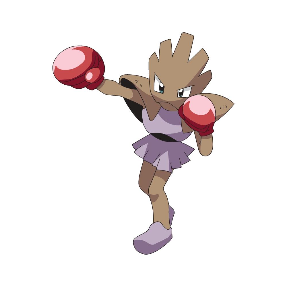 Tygnon Pokemon Go